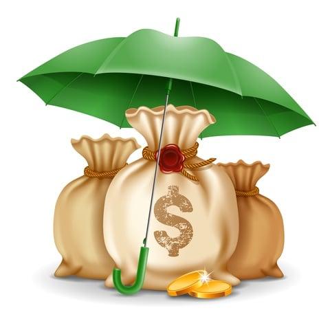 LIC International Deferred Annuity Plan - 100 Capital Protected.jpg